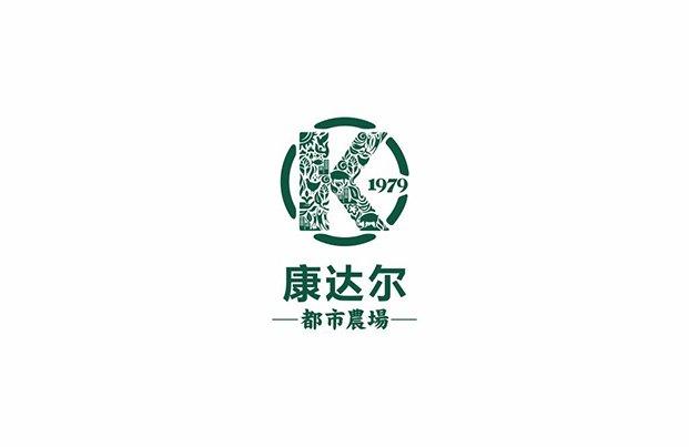 康达尔集团logo设计