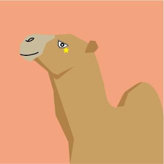 动物的平面小肖像
