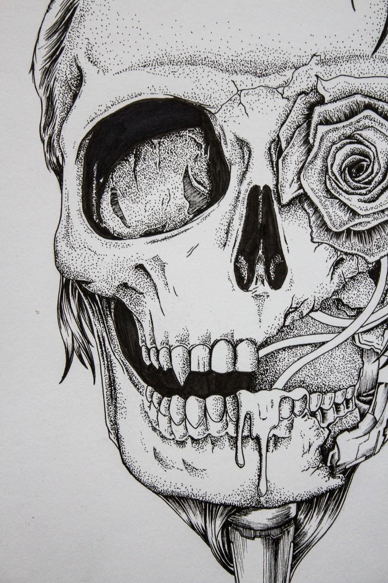 素描玫瑰花盛开步骤