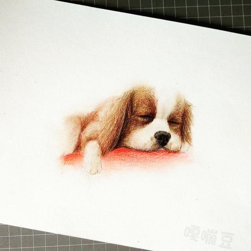彩铅手绘,9张萌萌哒小奶狗
