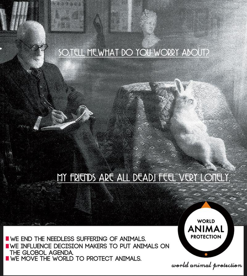 创意商业系列海报之 动物保护协会