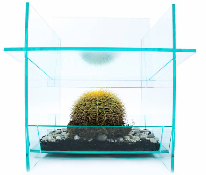 Cactus Chair 仙人掌椅子